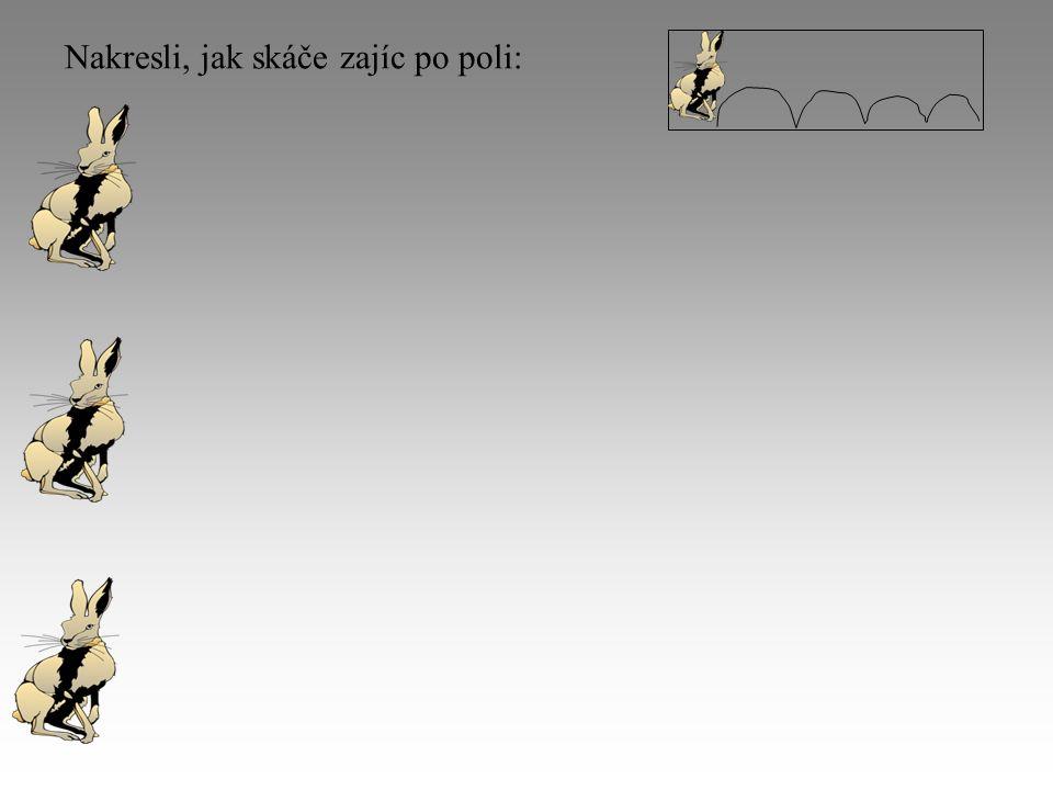 Nakresli, jak skáče zajíc po poli: