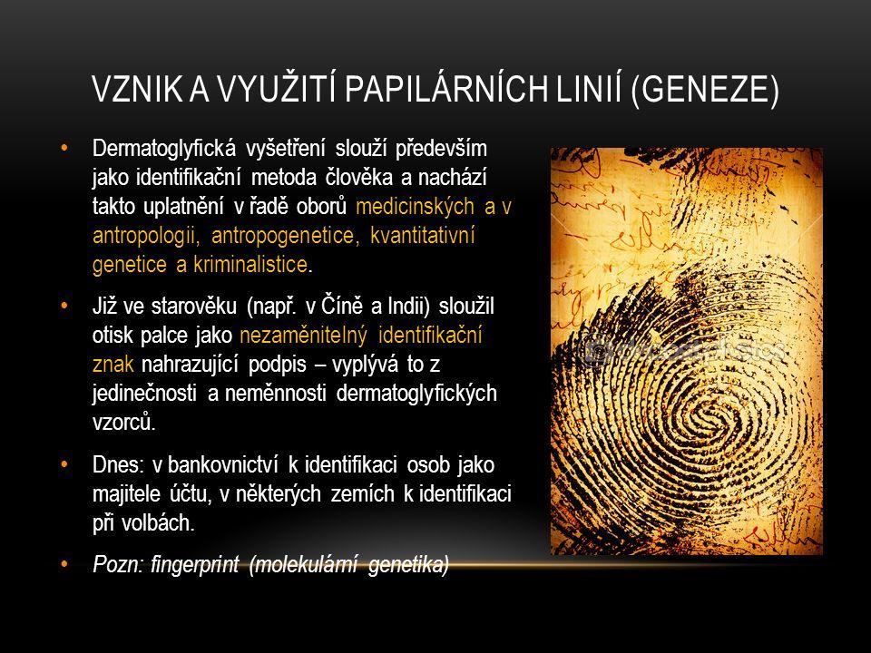 Vznik a využití papilárních linií (geneze)