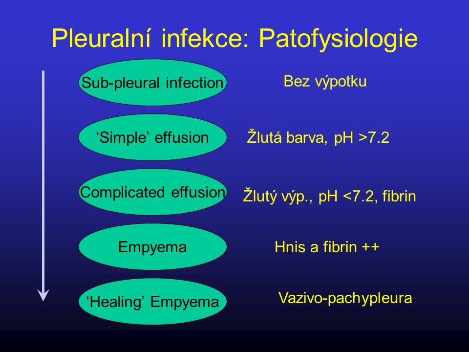 Pleuralní infekce: Patofysiologie