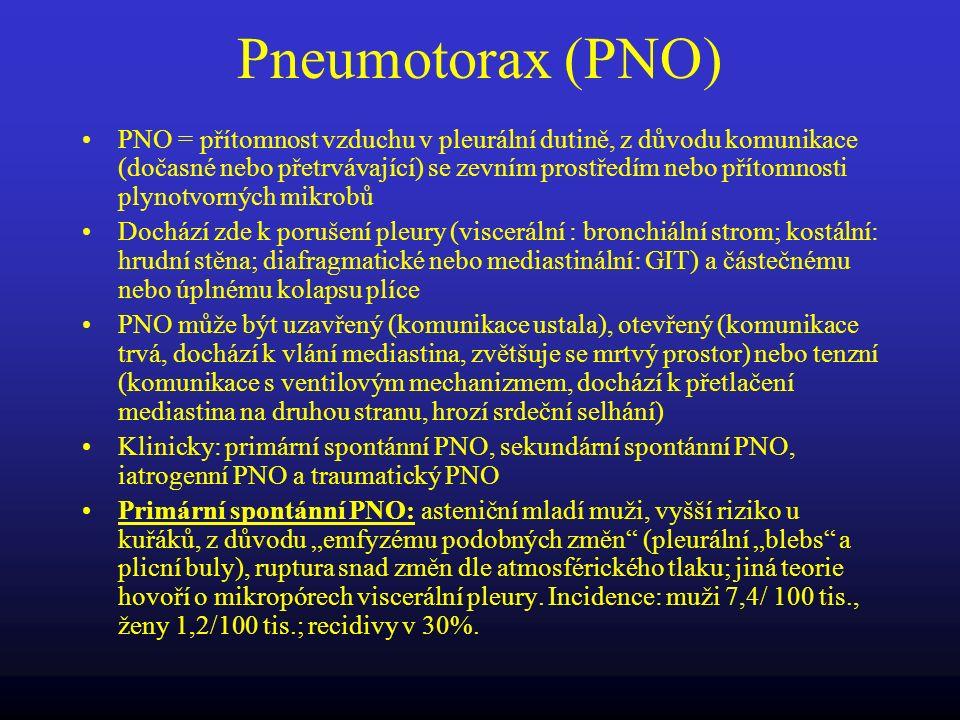 Pneumotorax (PNO)