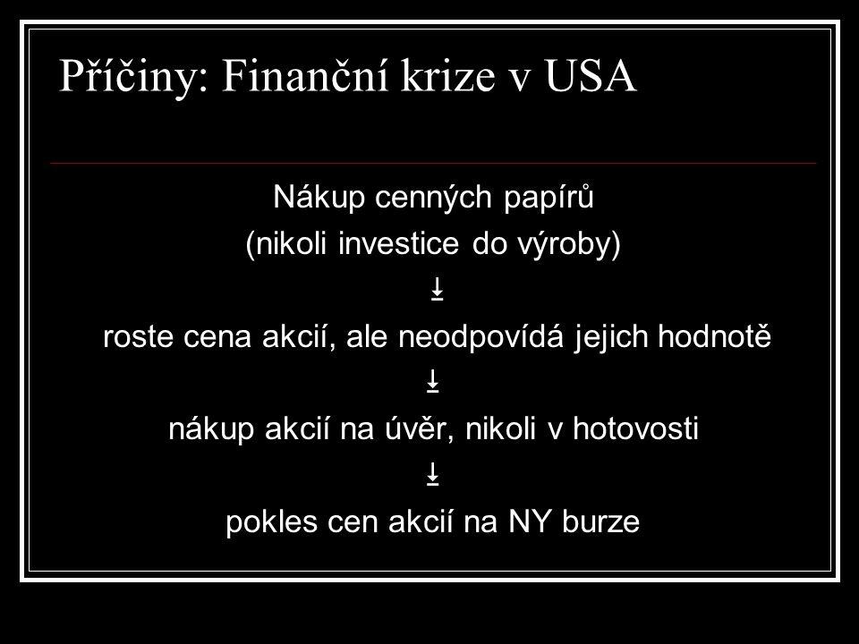 Příčiny: Finanční krize v USA