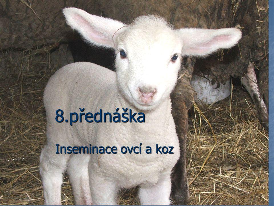 8.přednáška Inseminace ovcí a koz