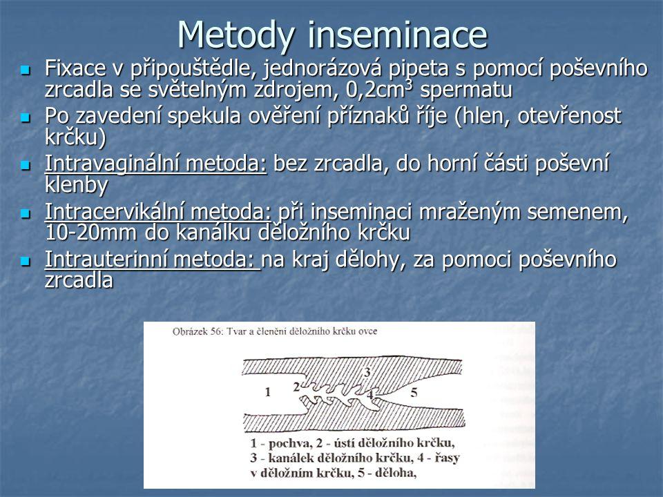 Metody inseminace Fixace v připouštědle, jednorázová pipeta s pomocí poševního zrcadla se světelným zdrojem, 0,2cm3 spermatu.