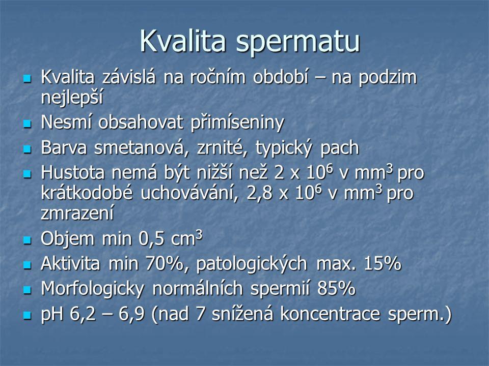 Kvalita spermatu Kvalita závislá na ročním období – na podzim nejlepší