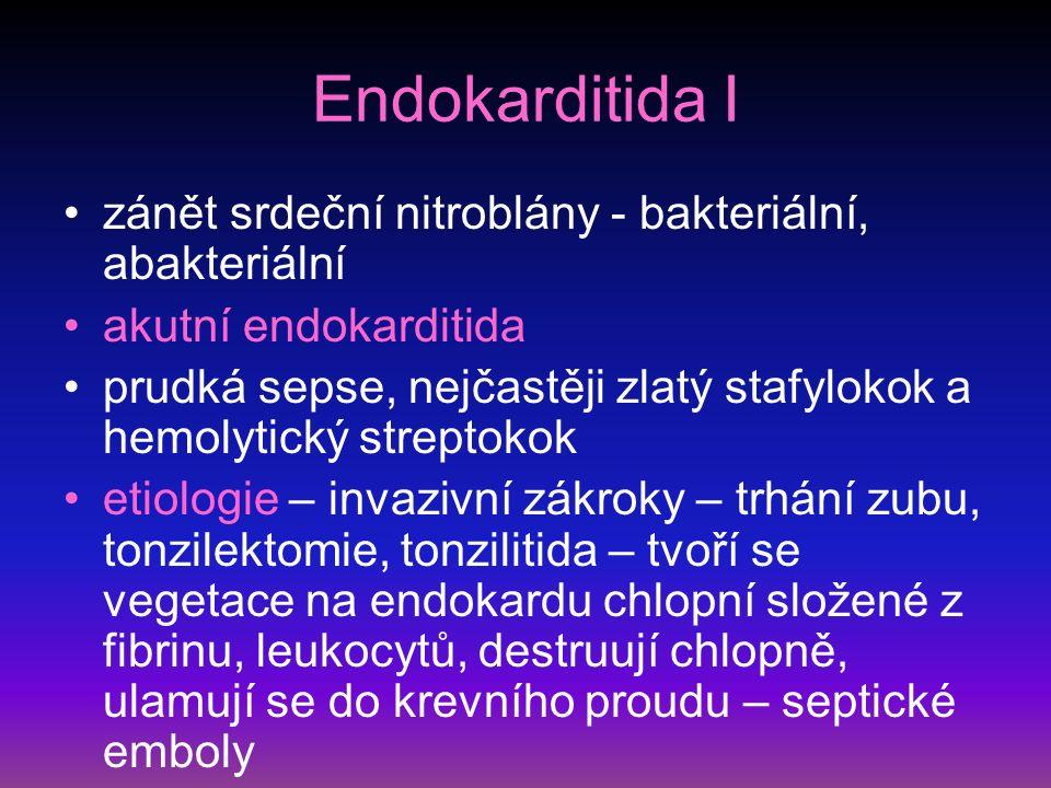 Endokarditida I zánět srdeční nitroblány - bakteriální, abakteriální
