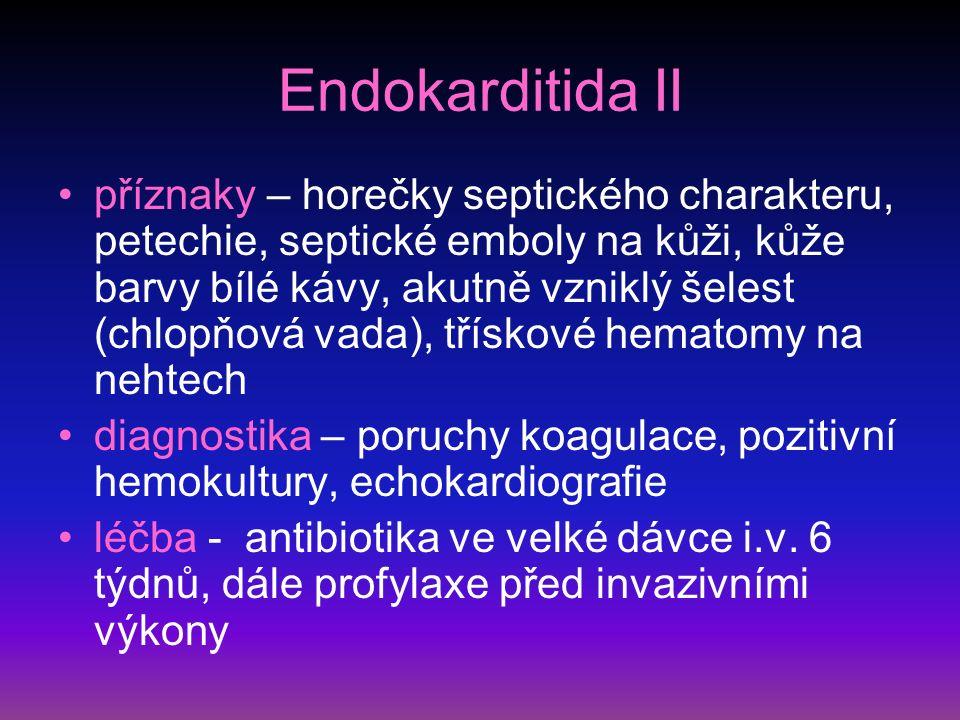 Endokarditida II