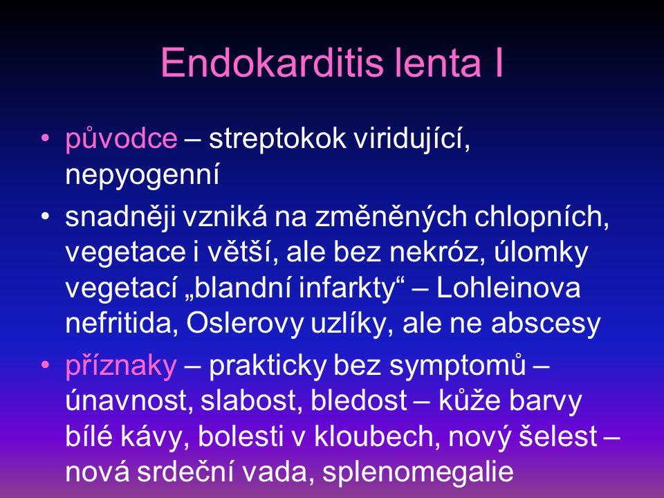 Endokarditis lenta I původce – streptokok viridující, nepyogenní
