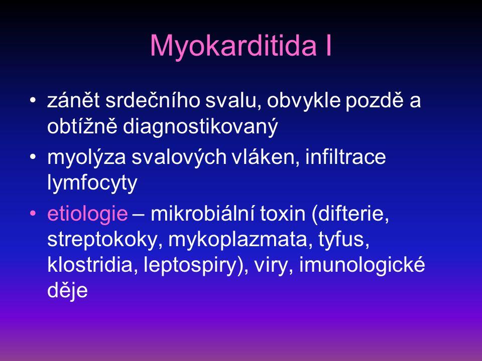 Myokarditida I zánět srdečního svalu, obvykle pozdě a obtížně diagnostikovaný. myolýza svalových vláken, infiltrace lymfocyty.