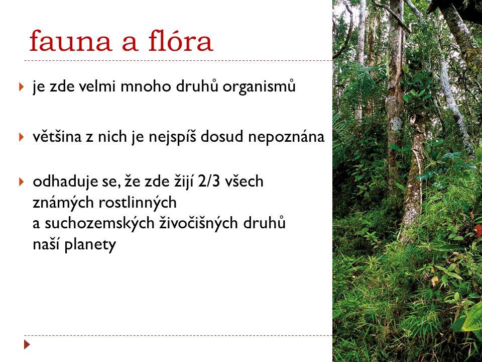 fauna a flóra je zde velmi mnoho druhů organismů