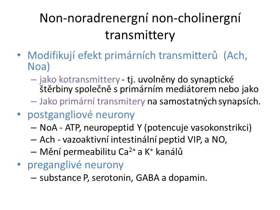 Non-noradrenergní non-cholinergní transmittery