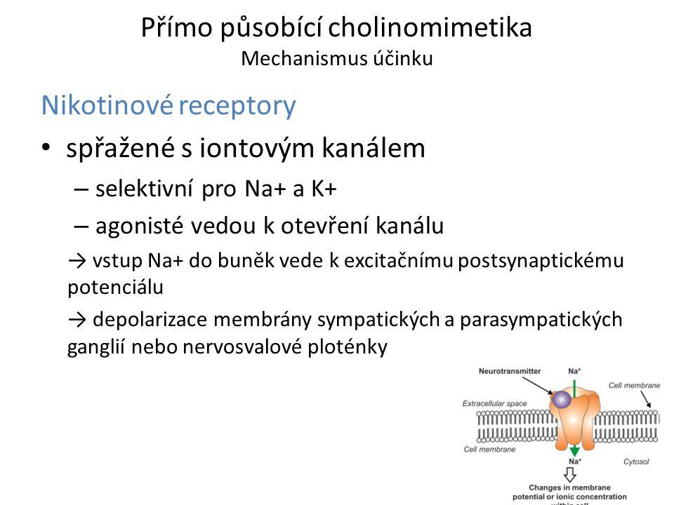 Přímo působící cholinomimetika Mechanismus účinku