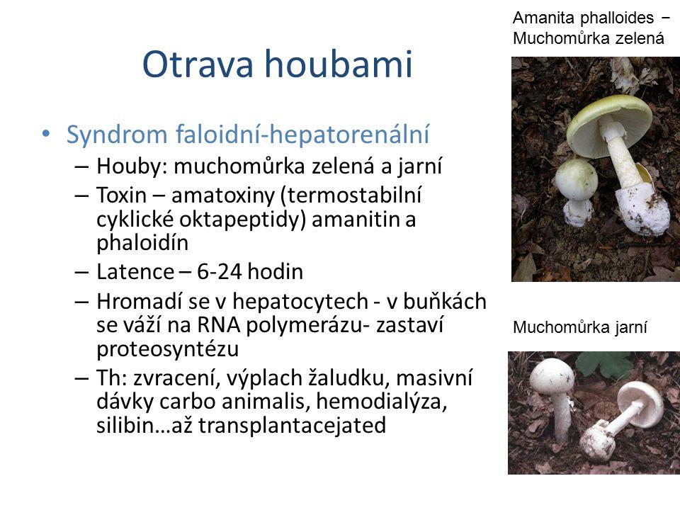 Otrava houbami Syndrom faloidní-hepatorenální