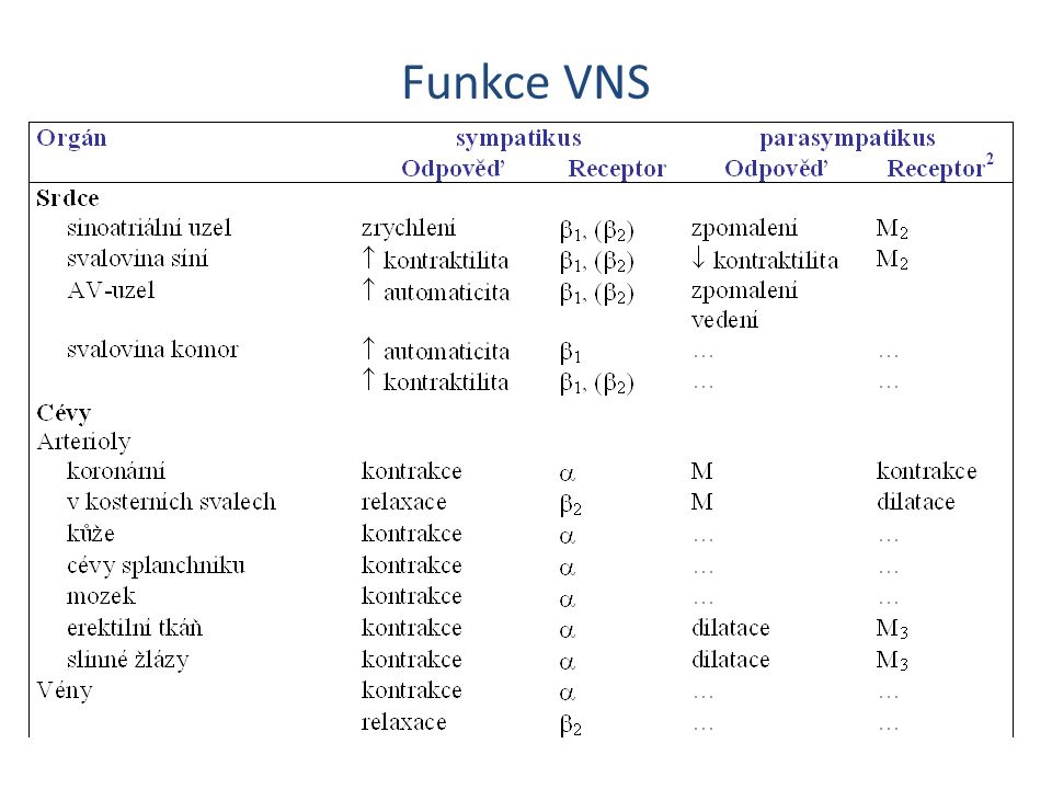 Funkce VNS Cevy mozku reaguji – po krvaceni kontrakce – nutno kalciovy blokator nimodipin