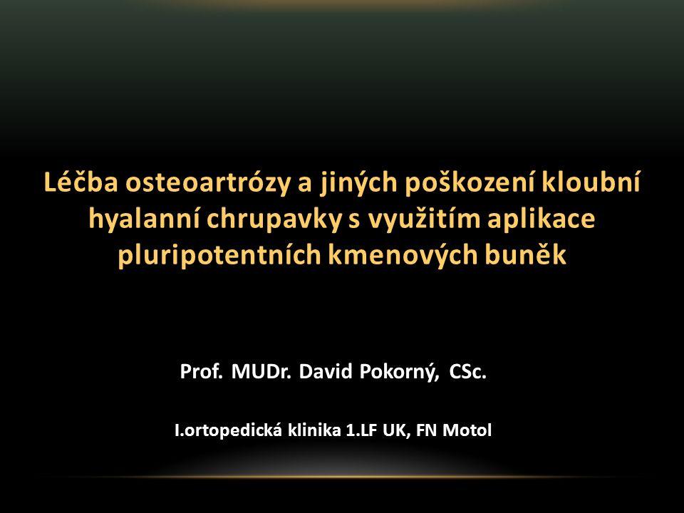 Léčba osteoartrózy a jiných poškození kloubní hyalanní chrupavky s využitím aplikace pluripotentních kmenových buněk