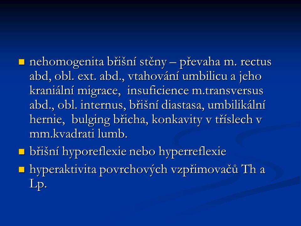 nehomogenita břišní stěny – převaha m. rectus abd, obl. ext. abd