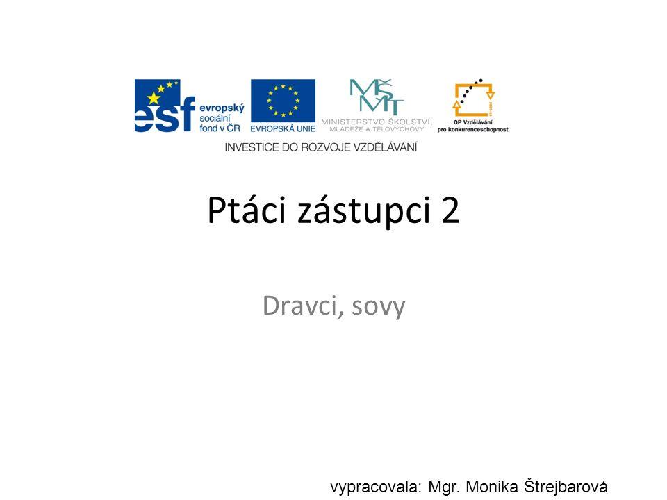 Ptáci zástupci 2 Dravci, sovy vypracovala: Mgr. Monika Štrejbarová