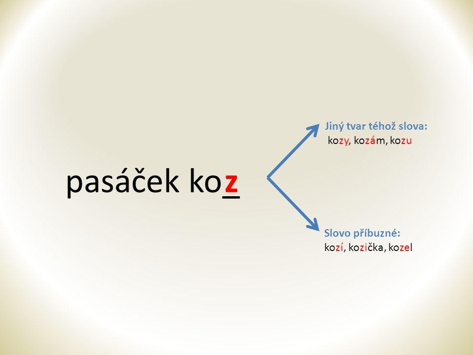 pasáček ko_ z Jiný tvar téhož slova: kozy, kozám, kozu Slovo příbuzné:
