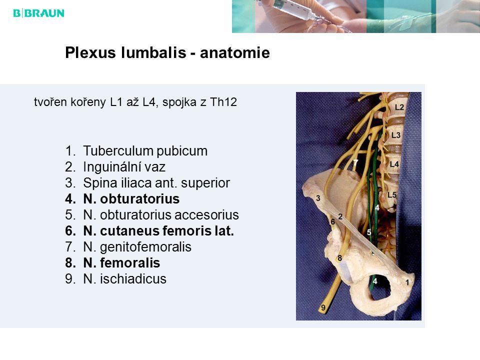 Plexus lumbalis - anatomie