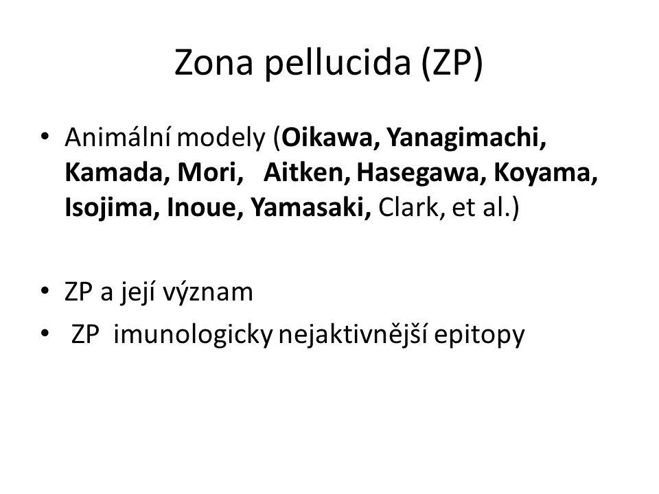 Zona pellucida (ZP) Animální modely (Oikawa, Yanagimachi, Kamada, Mori, Aitken, Hasegawa, Koyama, Isojima, Inoue, Yamasaki, Clark, et al.)