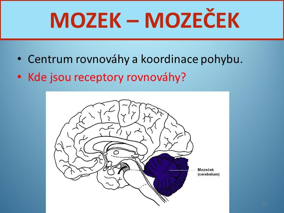 MOZEK – MOZEČEK Centrum rovnováhy a koordinace pohybu.