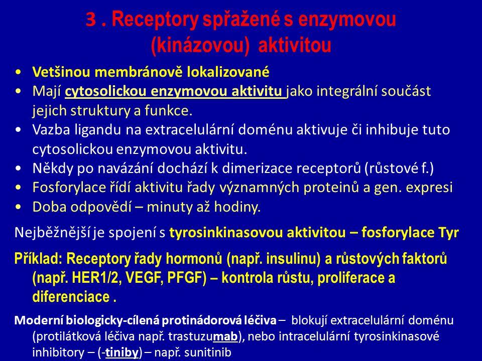 3 . Receptory spřažené s enzymovou (kinázovou) aktivitou