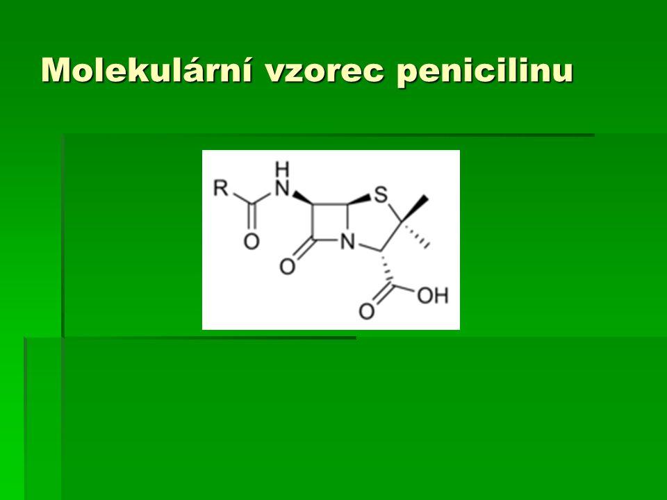 Molekulární vzorec penicilinu