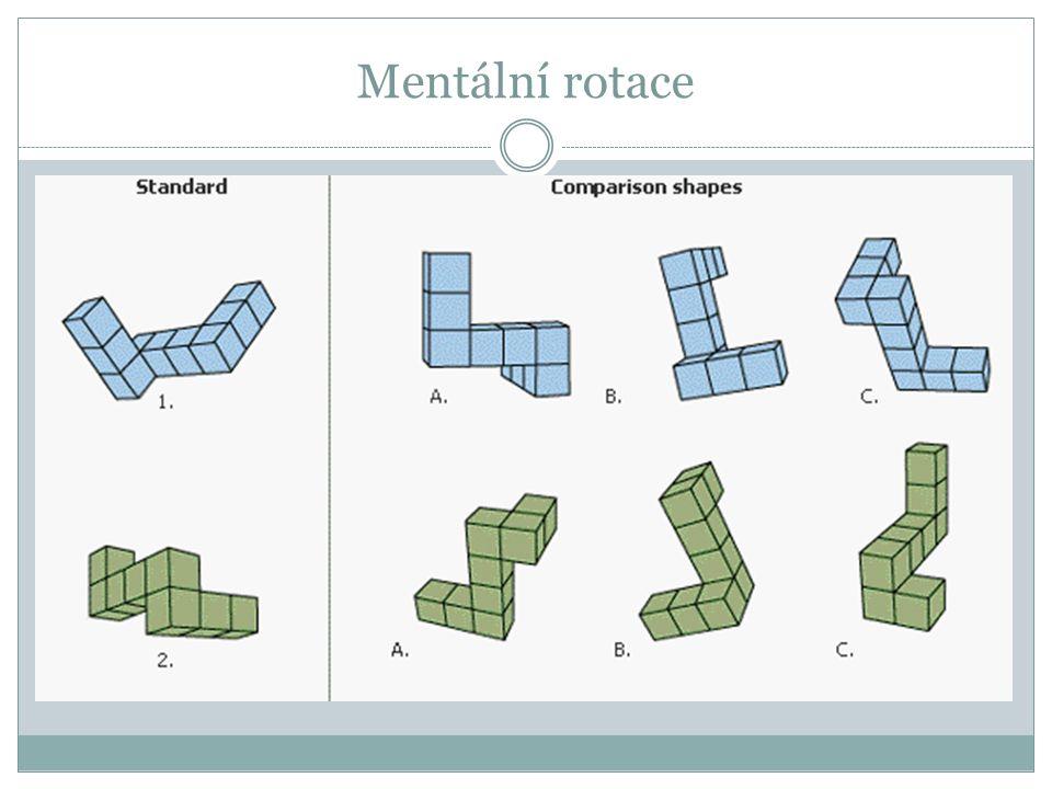 Mentální rotace
