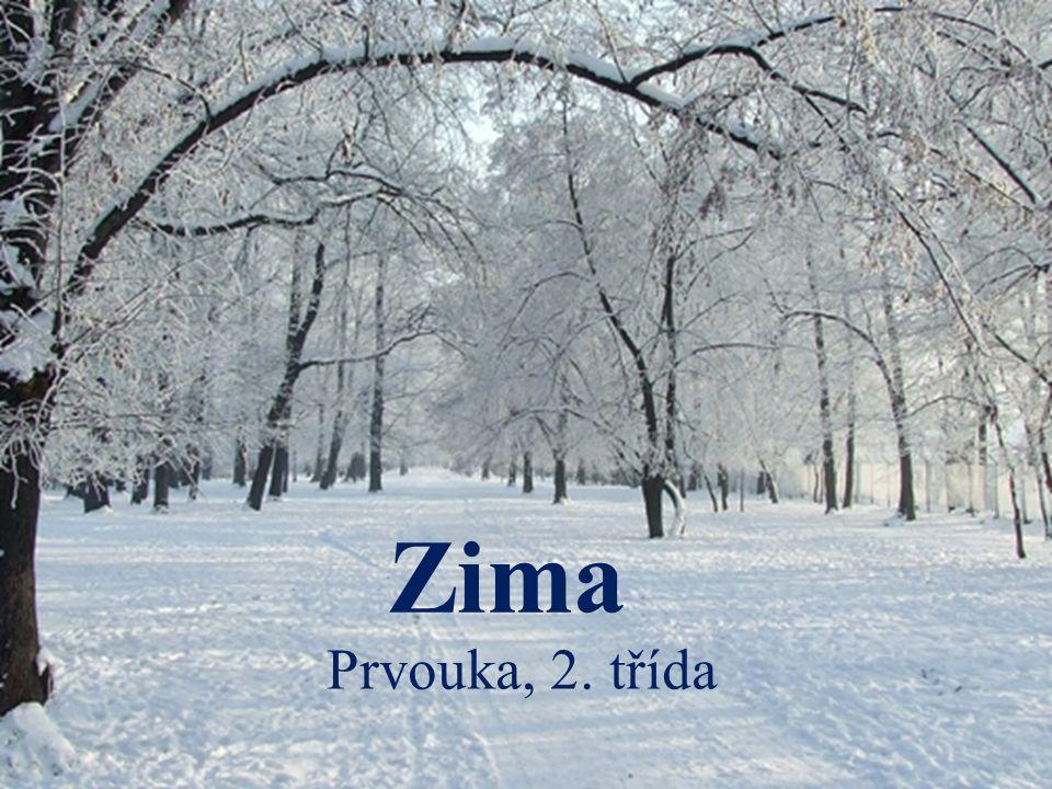 Zima Prvouka, 2. třída