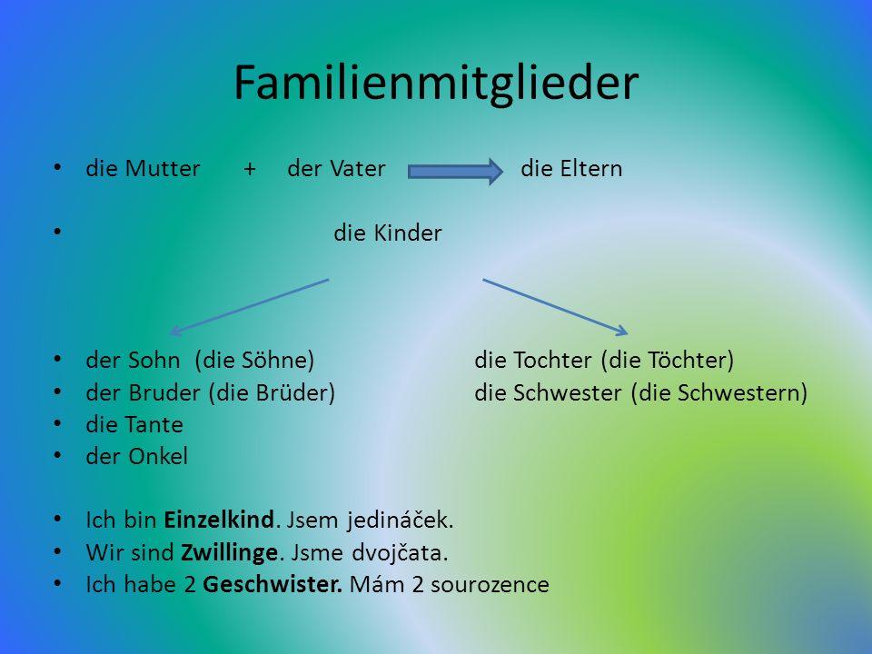 Familienmitglieder die Mutter + der Vater die Eltern die Kinder