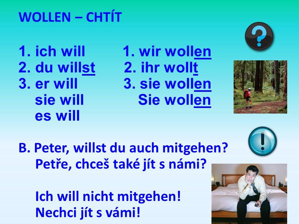 WOLLEN – CHTÍT ich will 1. wir wollen. du willst 2. ihr wollt. er will 3. sie wollen.