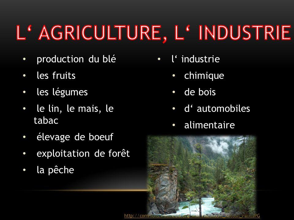 L' AGRICULTURE, L' INDUSTRIE