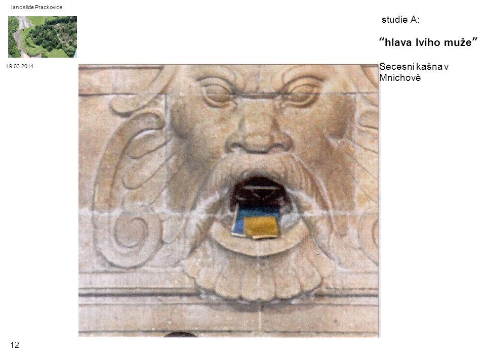 studie A: hlava lvího muže