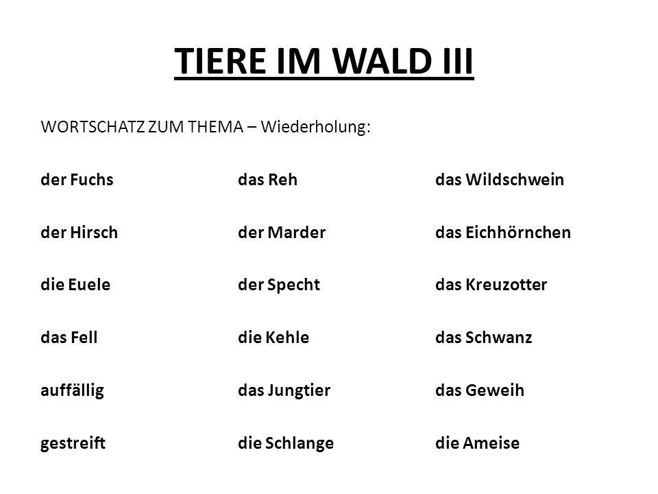 TIERE IM WALD III