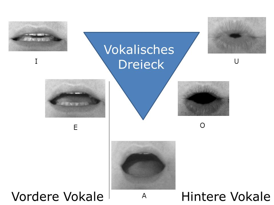 Vokalisches Dreieck I U O E Vordere Vokale Hintere Vokale A