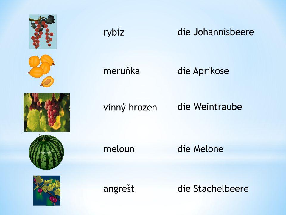 rybíz die Johannisbeere. meruňka. die Aprikose. vinný hrozen. die Weintraube. meloun. die Melone.