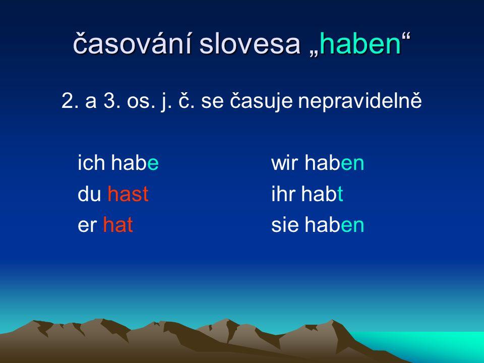 """časování slovesa """"haben"""