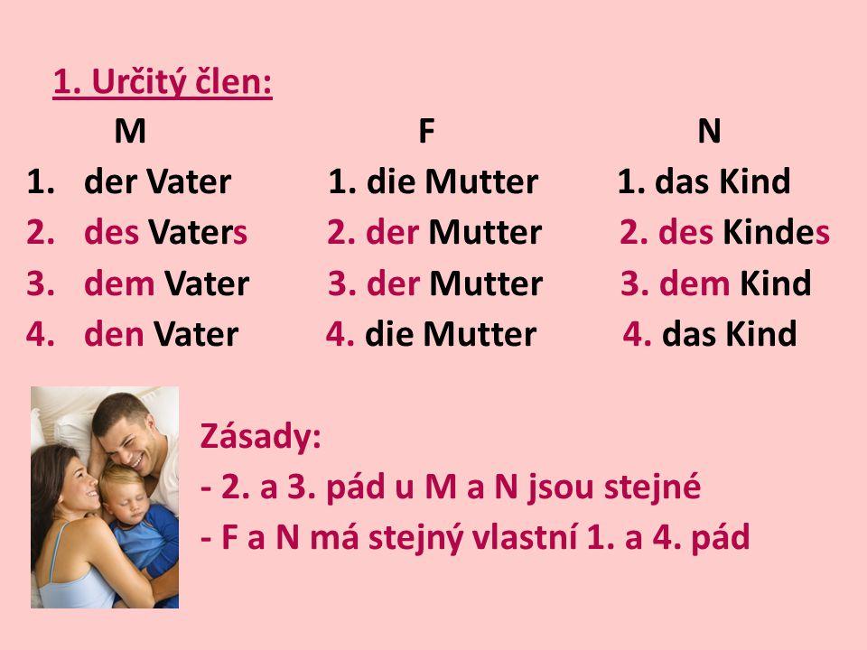 1. Určitý člen: M F N. der Vater 1. die Mutter 1. das Kind.