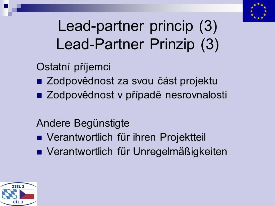 Lead-partner princip (3) Lead-Partner Prinzip (3)