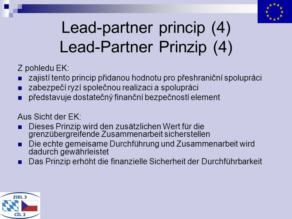 Lead-partner princip (4) Lead-Partner Prinzip (4)