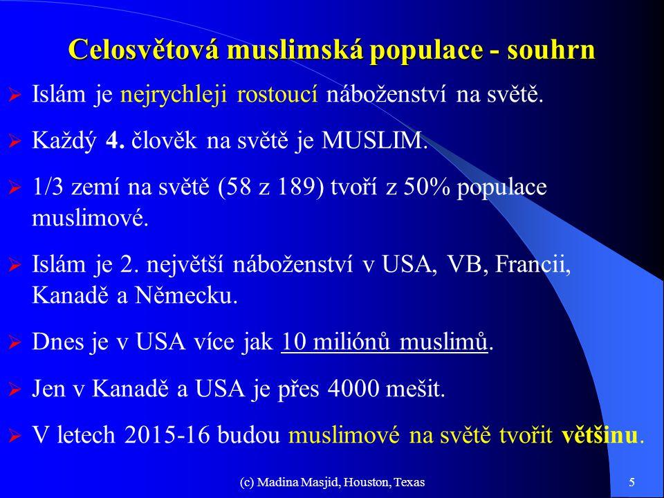 Celosvětová muslimská populace - souhrn