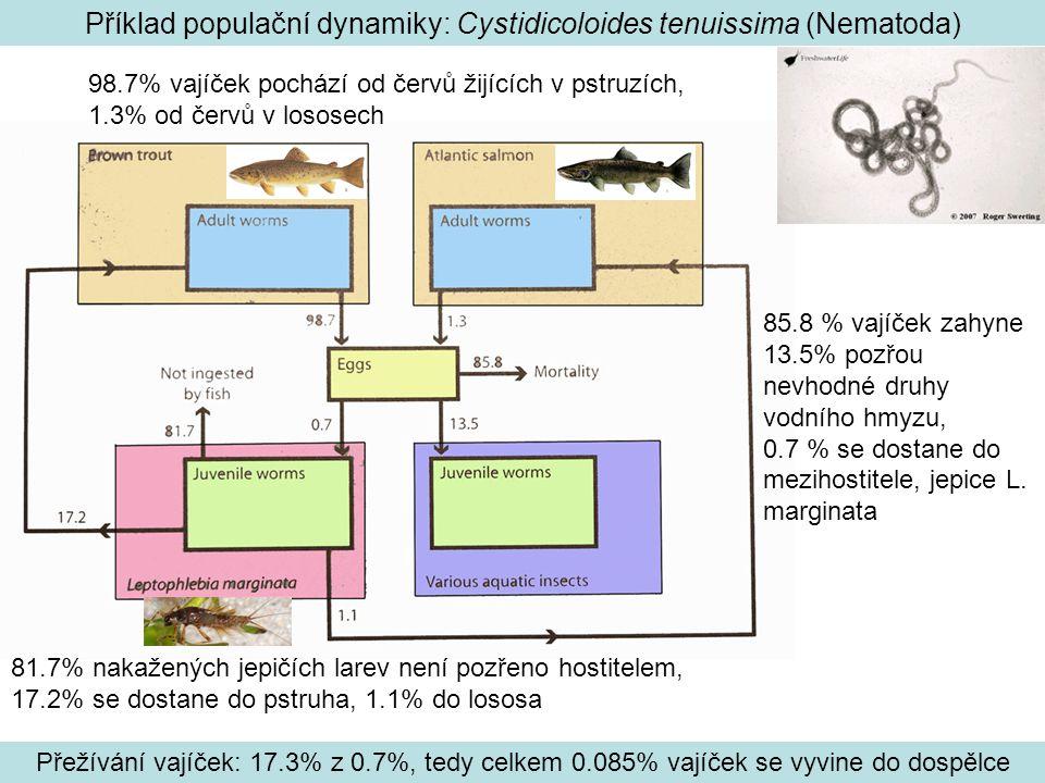 Příklad populační dynamiky: Cystidicoloides tenuissima (Nematoda)