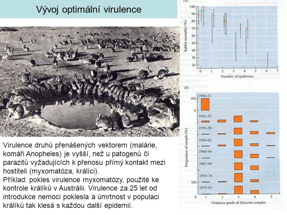 Vývoj optimální virulence