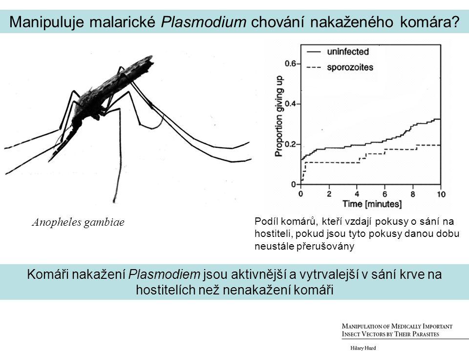 Manipuluje malarické Plasmodium chování nakaženého komára