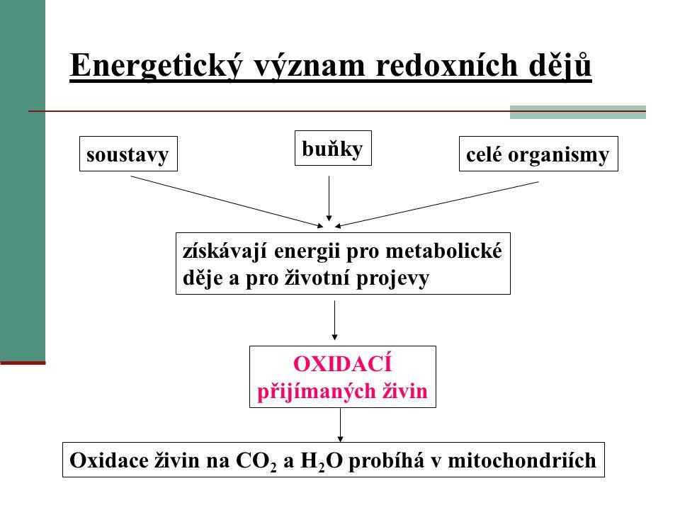 Oxidace živin na CO2 a H2O probíhá v mitochondriích