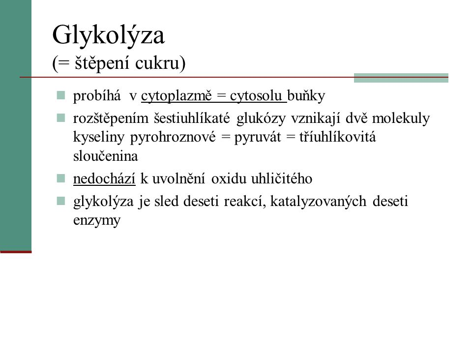 Glykolýza (= štěpení cukru)