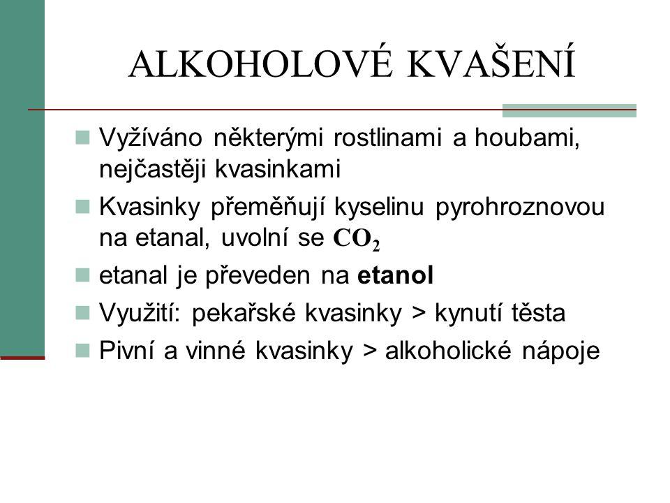 ALKOHOLOVÉ KVAŠENÍ Vyžíváno některými rostlinami a houbami, nejčastěji kvasinkami.