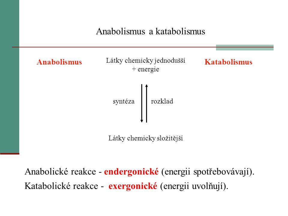 Anabolismus a katabolismus