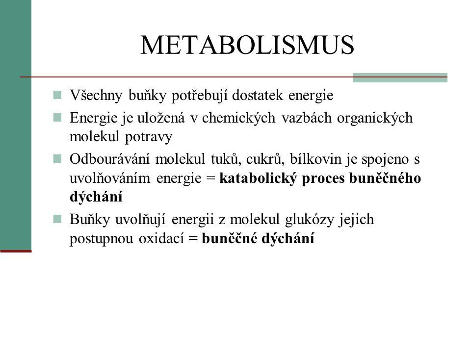 METABOLISMUS Všechny buňky potřebují dostatek energie