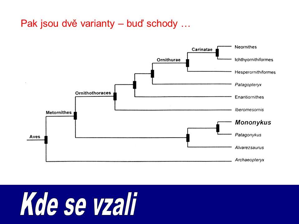 Pak jsou dvě varianty – buď schody …