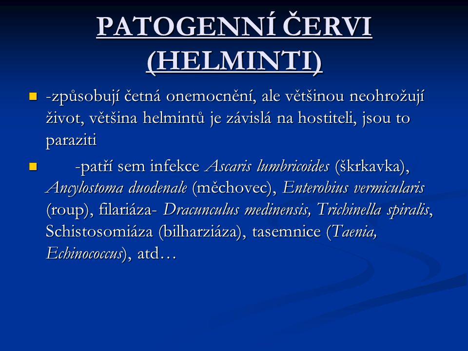 PATOGENNÍ ČERVI (HELMINTI)